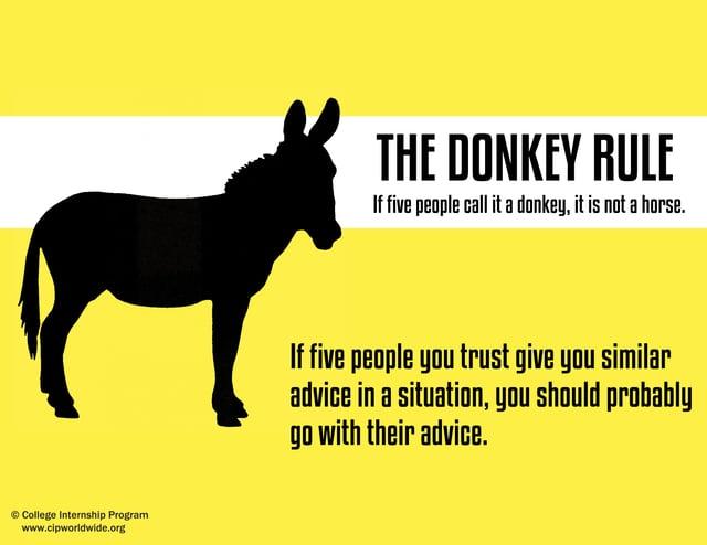 Donkey Rule